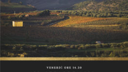 """Presentazione """"Guida Oro"""" - I VINI DI VERONELLI edizione 2019"""