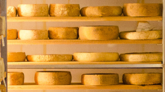 Allevatori o allineatori (di formaggi)?